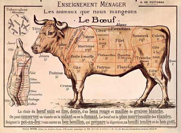 beef-diagram-depicting-the-different-cuts-of-meat