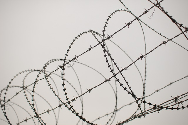 barbed-wire-833153_640